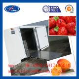 新鮮な果物の冷蔵室の冷たい倉庫の冷たい記憶装置200t