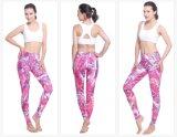 고품질 Mutiple 색깔을%s 가진 최신 인기 상품 여자 형식 요가 Legging는 선택한다
