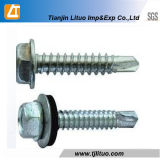 Fastener Factory Color Hex Head Self Drilling Roofing Screw