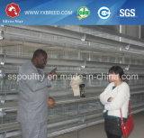 Gabbie automatiche della tettoia del pollame del pollo di strato di migliori prezzi con le uova in Algeria
