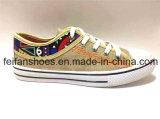 2017の標準的な学校のズック靴の余暇の注入の靴(FFDL170109-02)