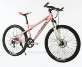 "24sp Aluminum Frame MTB 26 "" Female Mountain Bike (vriespunt-mtb-A077)"