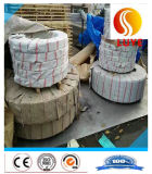 striscia dell'acciaio inossidabile della bobina dell'acciaio inossidabile di 310S 316ti