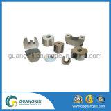 Kundenspezifische Alnico-Magneten für Guita Aufnahme