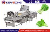 Rondelle à fruits et légumes à haute capacité Machine à laver aux légumes / laveuse à bulles