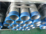 Threaded End와 Plastic Cap를 가진 ASTM A53 Gr. B 중국 Galvanized Steel Pipe