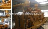 Centrale elettrica di gassificazione della biomassa di CHP della piccola scala