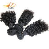 Arricciatura del Jerry dei capelli del Virgin dei Peruvian del commercio all'ingrosso 100%/capelli ricci malesi