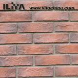 文化石によって使用される煉瓦、古代煉瓦、壁(YLD-18009)のための煉瓦