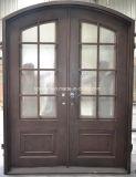 Допустимый стеклянные двери обеспеченностью ковки чугуна
