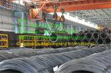 Reforçar o fio Rod de aço deformado Q195, SAE1008b, SAE1006b