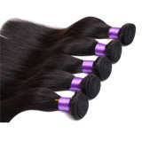 Le double volume brésilien bon marché droit soyeux normal de trame de cheveux de Vierge