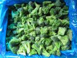 Bróculi congelado con alta calidad