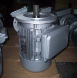 1/4의 4HP 2 가치 축전기 단일 위상 AC 모터