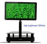 Heiß! 65inch Waterproof LCD Display