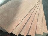 madera contrachapada del anuncio publicitario de la hoja de la madera contrachapada de la cara de la chapa de Bingtangor de la base del álamo 1220*2440 de 3.6m m