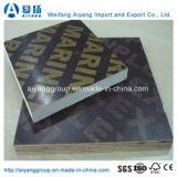 安い価格の良質のフィルムによって直面される合板または閉める合板または海洋の合板