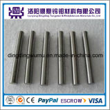 Migliore Selling Different Sizes e Lengths Tungsten Rods/Bars o Molybdenum Rods/Bars in breve Arc Lamp Anode/Cathode Material