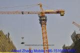 Gru a torre da 10 tonnellate dal gruppo di Hongda