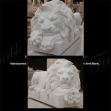 Scultura del leone di Metrix Carrara per Decoraton domestico Ma-534