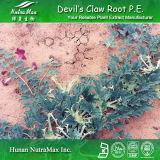 Extrait de la griffe du diable naturel de 100% (Harpagosides 3%-5%)