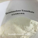 Masteron Enanthate Drolban anabolico Drostanolone Enanthate per Bodybuilding