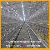 De verticale Systemen van de Batterijkooi van de Jonge kip van de Apparatuur van de Landbouw van het Gevogelte