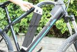 Gebirgsart-elektrische Fahrräder mit Form-Entwurf für russischen Markt