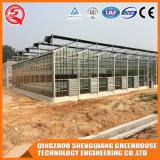 Landwirtschaft Multi-Überspannung Garten-ausgeglichenes Glas-grünes Haus