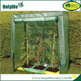 Estufa transparente personalizada popular do jardim do PVC de Onlylife mini