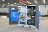 Dirigere il compressore d'aria economizzatore d'energia guidato della vite