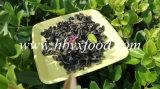 Verdura secca del fungo del nero della parte posteriore di bianco di prezzi di fabbrica