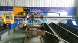 Máquina que bisela del corte del CNC de la hoja del hierro de placa de acero del pórtico