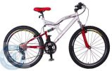Vélo de montagne en acier (HQL-M2694)