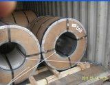 Гальванизированный стальной лист в катушке