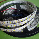 24ボルトFlexible LED Strip Lighting/Flexible LED Tape Strip 5050SMD