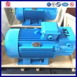 Motor elétrico trifásico 5.5kw de guindaste de torre do dever S3