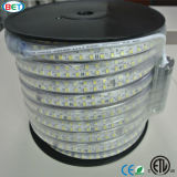 Diodo emissor de luz dobro da luz de tira do diodo emissor de luz Ribbon/LED da fileira 5050outdoorlight de ETL 144LED/M