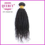 Les cheveux humains brésiliens de courbure crépue de prix usine tissent pour des femmes de couleur