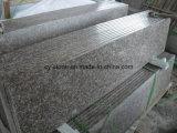 Más barato de China G664 mármol / baldosas de granito pulido en / flameado / martillo de Bush