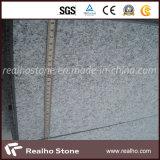 福建省からの中国の国内G603花こう岩の平板