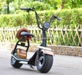Citycoco Scrooser保証2年の2016 Citycoco流行の2の車輪の電気スクーター