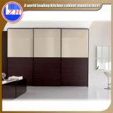 寝室のための現代ヨーロッパの木の引き戸のワードローブの食器棚(ガラスと)