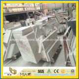 Castro White Marble Building Material pour Construction Floor/Wall Decoration