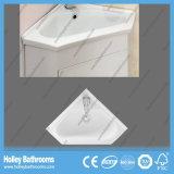 Suelo libre vendedor caliente - unidad de la esquina montada de la vanidad del cuarto de baño (BF111V)