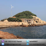 ホーム使用のための中国5000W 48Vの水平の風カエネルギーの発電機