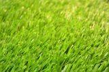 Трава для любимчиков, искусственная дерновина Ynthetic против