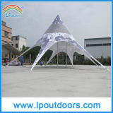 12X17m Advertizing Twin Star Tent Canopy