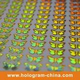 Sticker van uitstekende kwaliteit van het Hologram van de Laser van de Veiligheid 3D