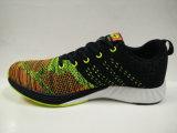 Chaussures de gymnastique de tricotage d'impression coloré neuf pour le mâle